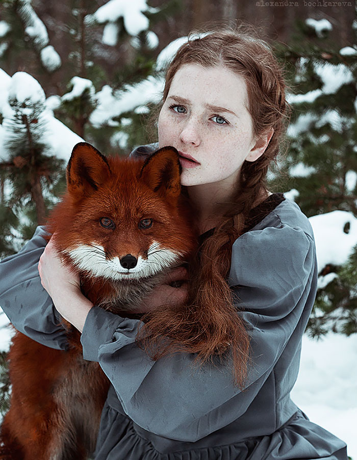 Mesebeli portrésorozat a rókáról és a lányról – Rókavilág.hu
