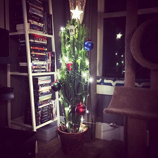 Négylábú biztos karácsonyfák - Rókavilág.hu