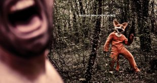 Reklámok a róka szőrme feldolgozás és viselés ellen – Rókavilág.hu
