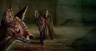 Rókás Walking Dead és Cyberpunk rajzok - Rókavilág.hu