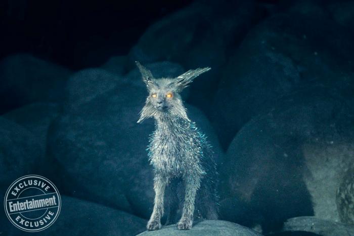 Vulptex a kristályróka, avagy a Star Wars világ rókája - Rókavilág.hu